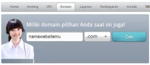 menyewa domain